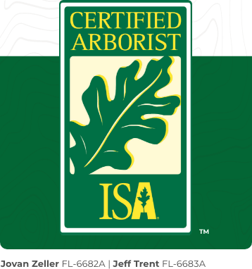 ISA-Certified Arborists Logo for Tree Care