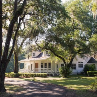 Home surrounded by trees   Emergency Tree Service