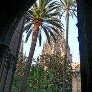 Barcelone, Barri Gotic, La cathédrale (la Seu): le cloître