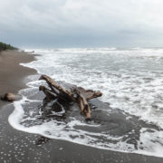 Plages de Tortuguero oiu viennent pondre les tortues