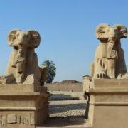 Karnak. Les sphinx criocéphales du Dromos