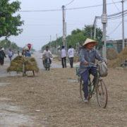 Paille de riz dans la rue