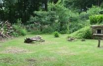 stumpery-5-burnby