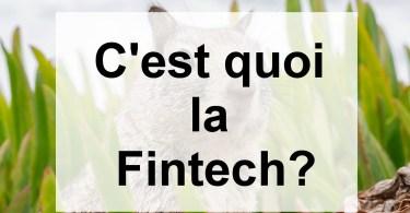 C'est quoi la Fintech?