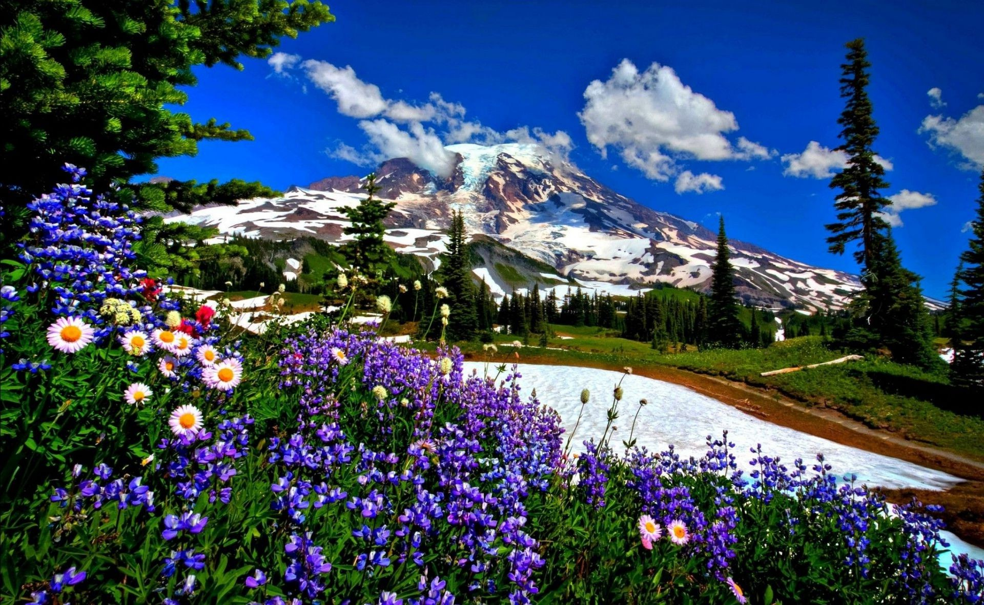 Full Hd Wallpapers Fall Nature Landscape Road Mountain Flowers Snow Phone Wallpapers