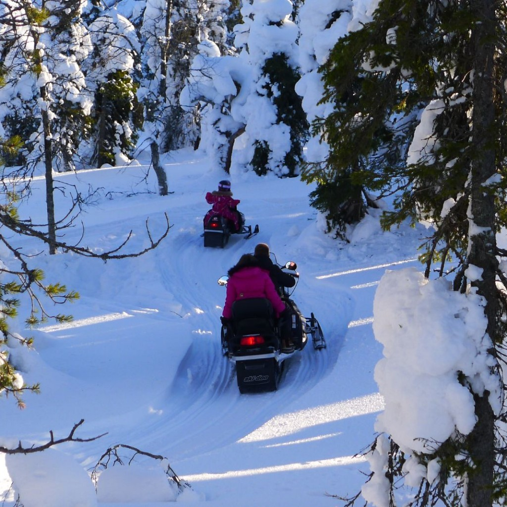 Enjoy The Ultimate Snowmobile Experience In Aspen