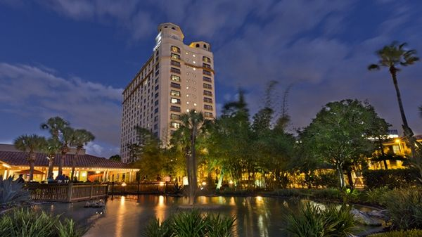 5 Great Hotels For Family Travel With The 100,000 AMEX Hilton Surpass Bonus