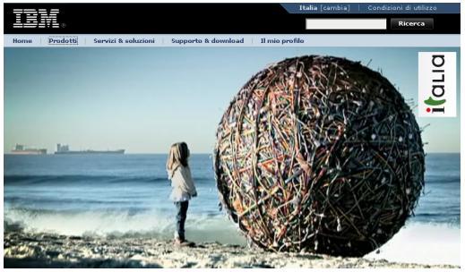 IBM ball