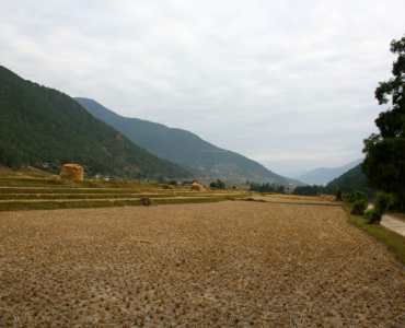 Pho Chhu Valley, Punakha, Bhutan