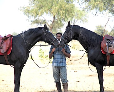 Riding in Rajasthan, India   Riding Holidays in India   Millis Potter Travel
