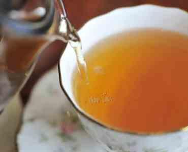 Tea Tasting in Colombo, Sri Lanka