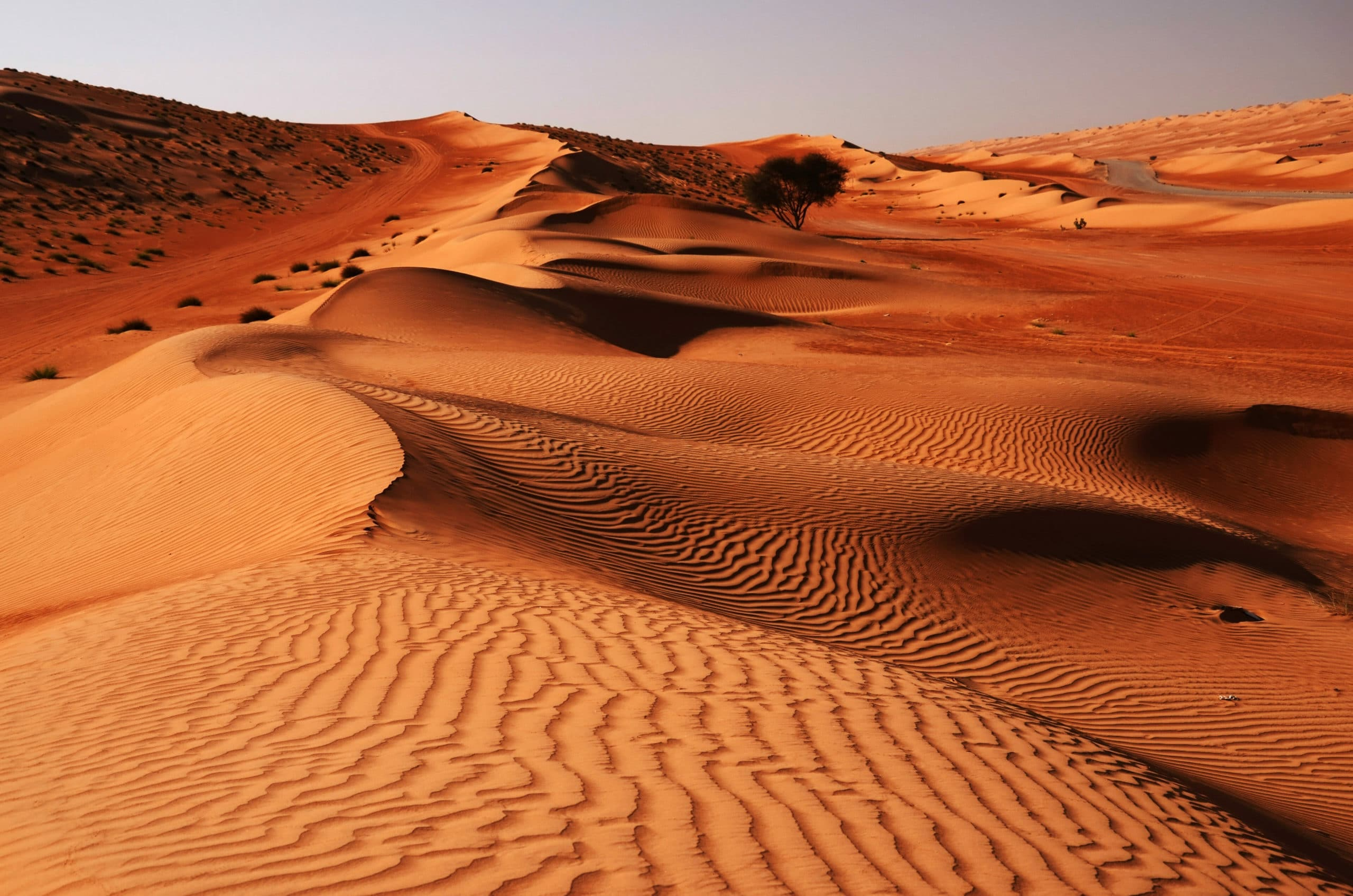Luxury Tour of Oman - Wahiba Sands