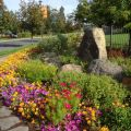 Flower garden design amp installation seasonal color maintenance