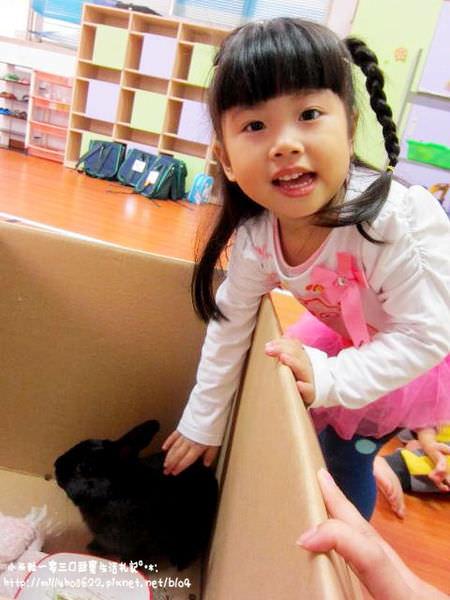 【小米粒幼稚園日記】漸漸進入佳境。上學真有趣