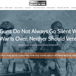 Veteran Mental Health Case Study