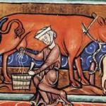 Medieval farming – A little bit of bread and no cheese