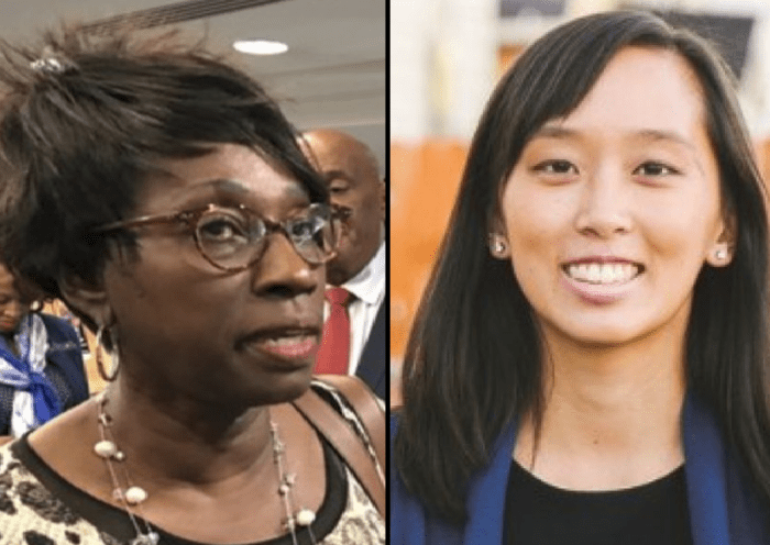 Michigan Democratic Legislator Under Fire For Using Racial Slurs Against Asian Opponent