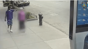 92-Year-Old Woman Punched By Thug In New York, Police Seeking Help