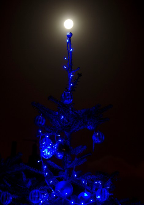 Wordpress Weekly Photo Challenge Twinkle Christmas Tree Carl Milner Photography