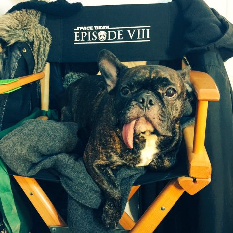 Carrie Fisher on set Star Wars Episode VIII Space Bear Twitter