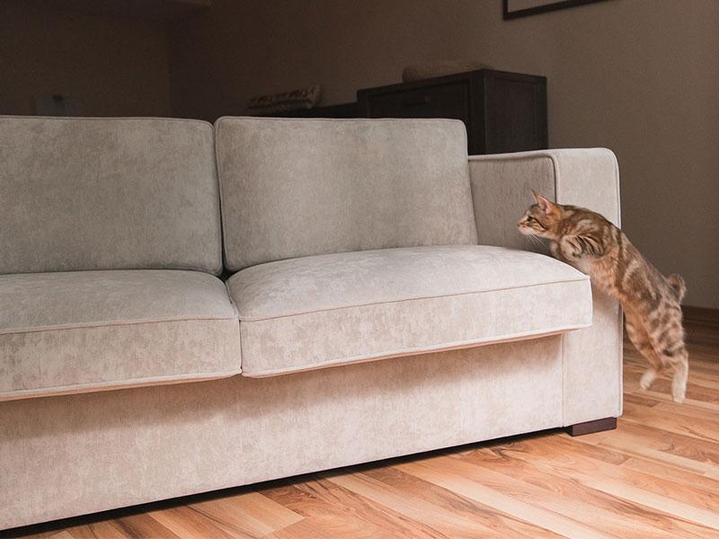 Milord Casa 米盧家飾 - 美國Crypton超級布料,以色列貓抓布,寵物床墊,寢具床包,沙發布,舒眠薄墊,翰銓國際