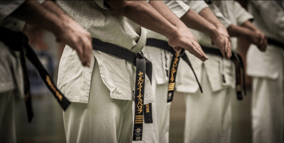 karate pojasevi belts