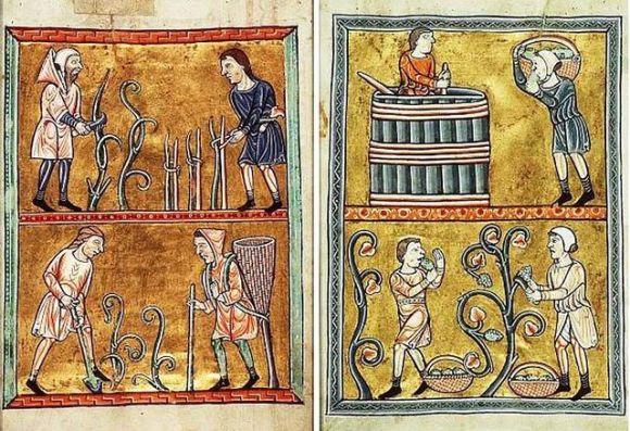 производња вина у средњем веку