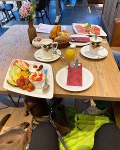 Café Ingwersen