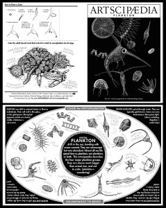 This educational coloring sheet combines science and art to explore plankton. Medium: scratchboard and digital