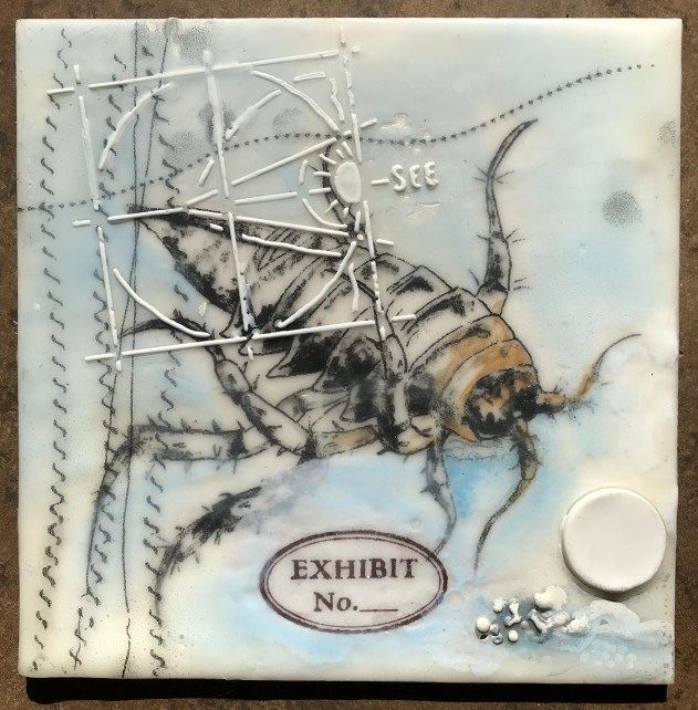 Antarctic isopod, medium: encaustic wax