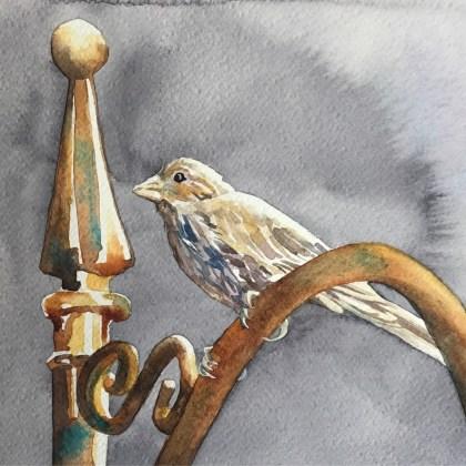 painting of a bird by Nancy Murphree Davis