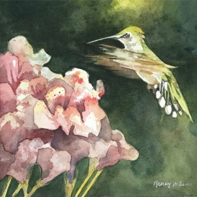 Hummingbird painting by Nancy Murphree Davis