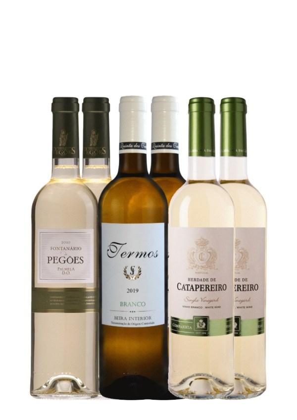 valge veini komplekt