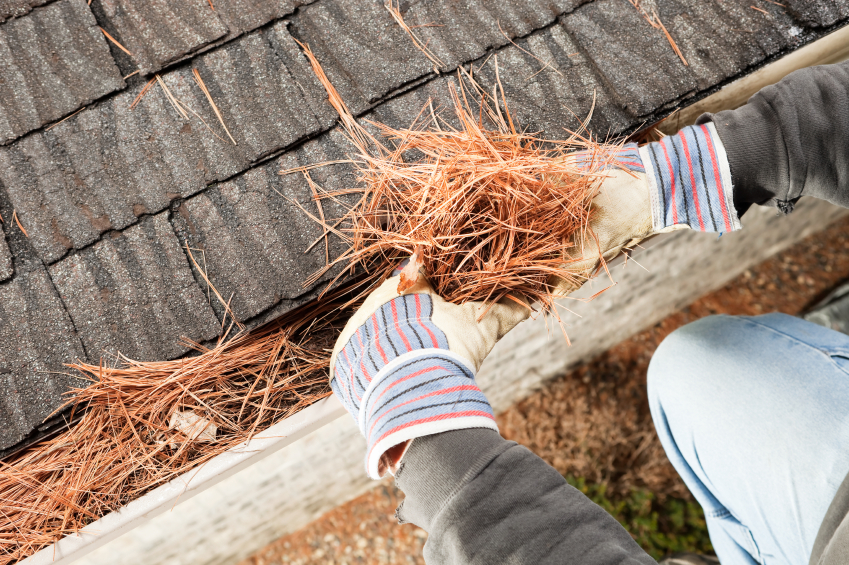 Image result for Gutter Cleaning  istock