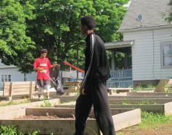community-garden-andre-lee-ellis