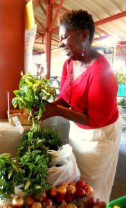 Chef-Caroline-Carter-with-Basil-raw-food