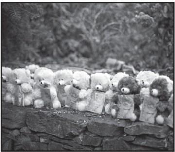 teddy-bears-in-a-row