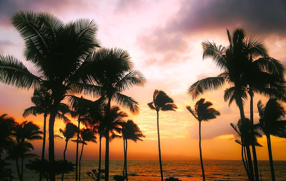 ¿Hawaii a precio económico? ¡Sí se puede!
