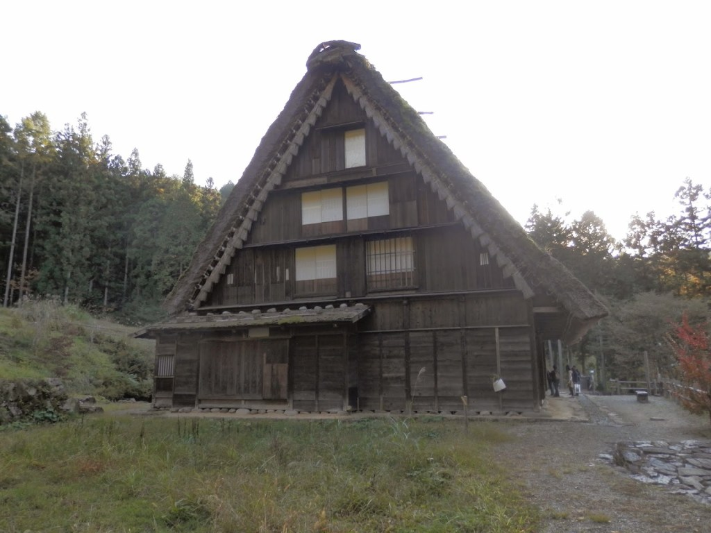jap28