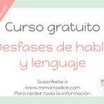 curso desfases de habla y lenguaje