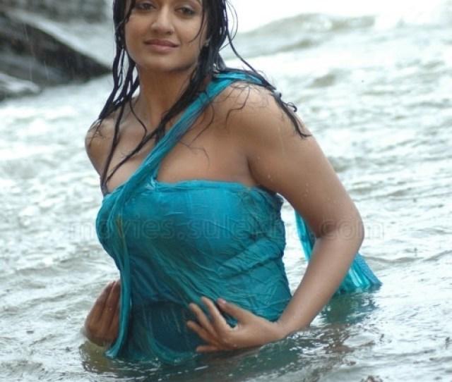 Vimala Raman In Wet Saree Photo