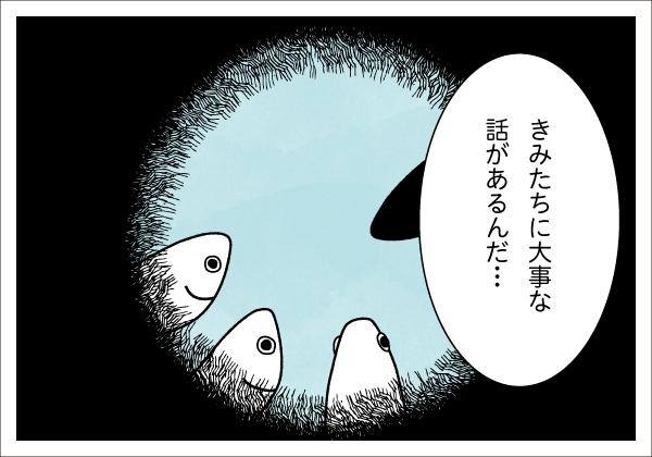 【4コマ漫画】きょうのおさかな#13-1