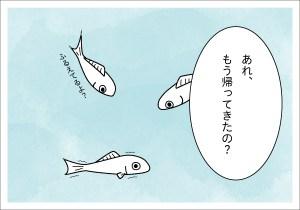 【4コマ漫画】きょうのおさかな#15-4