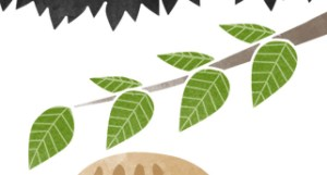 葉っぱ線不透明度50%