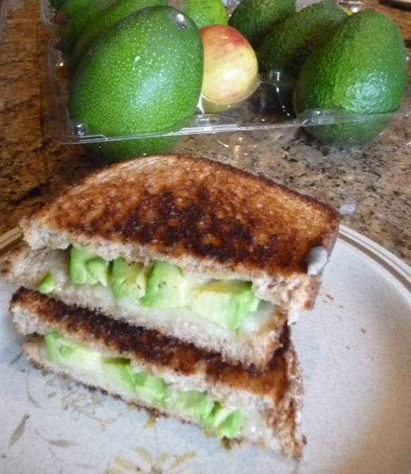 Grilled Cheddar with Avocado Sandwich