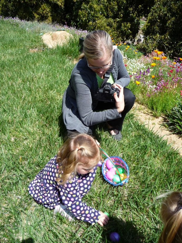 egg hunt in the avocado grove