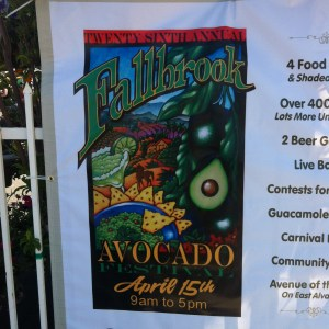 Avocado Festival Fallbrook poster
