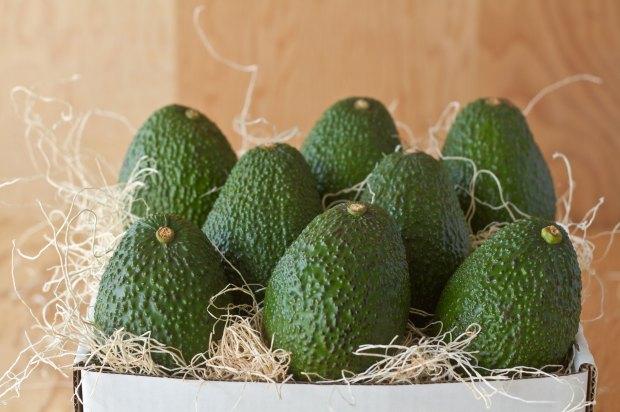 avocados from CaliforniaAvocadosDirect.com
