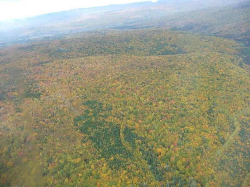 Gaspe Quebec autumn