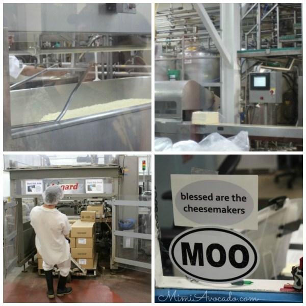 Cheese Making at Cabot